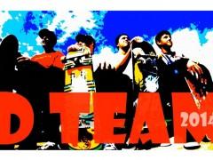 D-team 2014