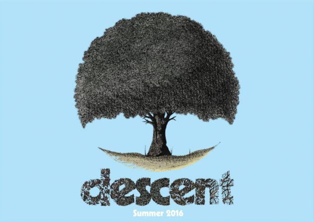 descent_skateboards1